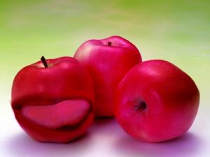 Äpple botar inte allt